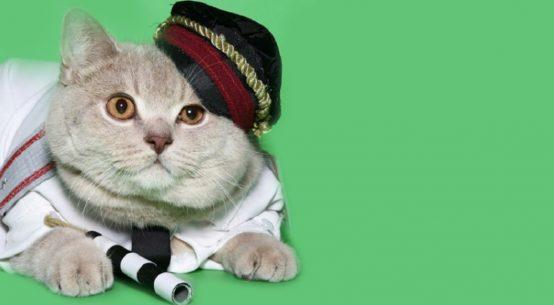 rusik la storia del gatto poliziotto