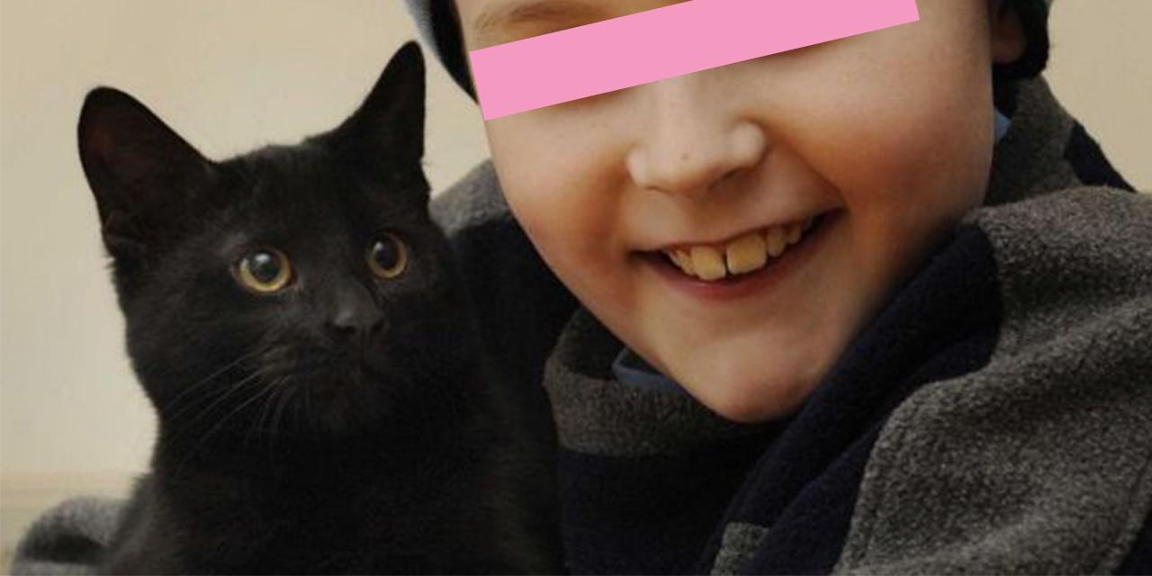 gatto nero salva la famiglia dall'incendio di casa