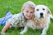 i cani aiutano i neonati con le allergie