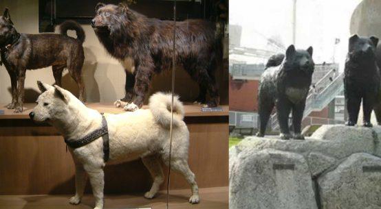 la storia giapponese di taro e jiro